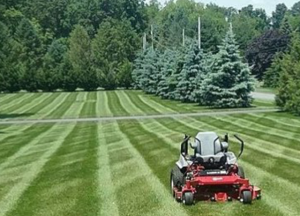 Lawn Care Services South Jersey
