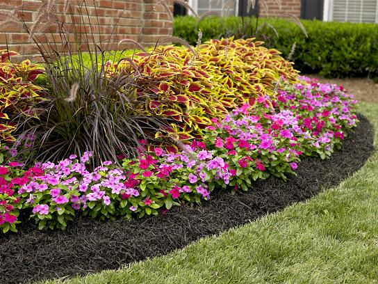 Mulching Services Get The Best Mulch From Royal Landscapes