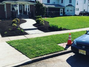 Residential Lawn Maintenance South Jersey