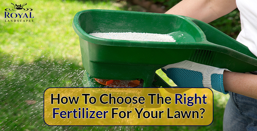 Fertilizer for your lawn